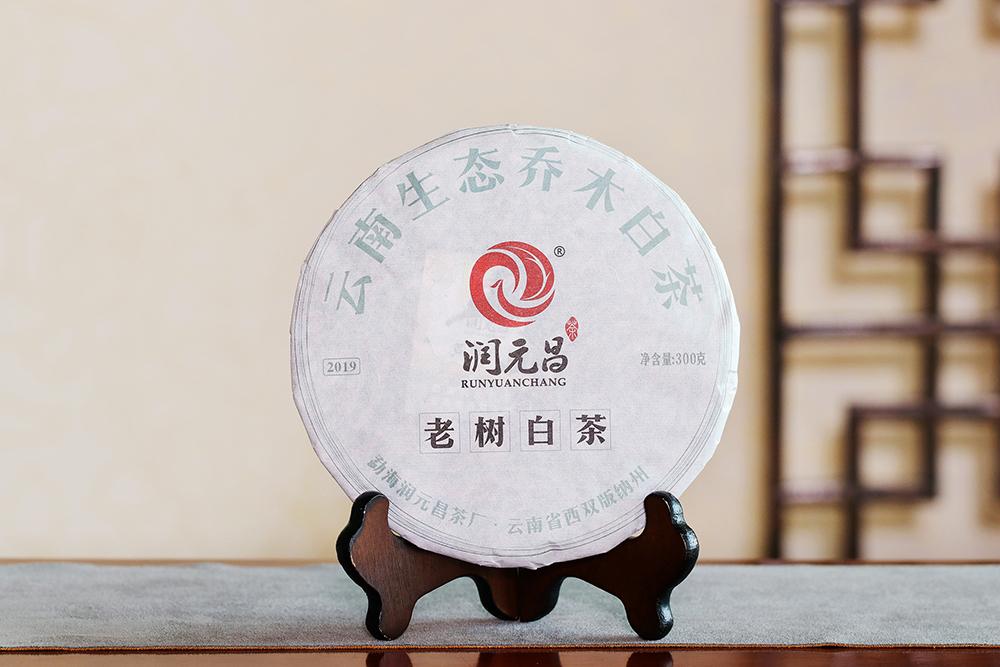 老樹白茶和福鼎白茶的區別