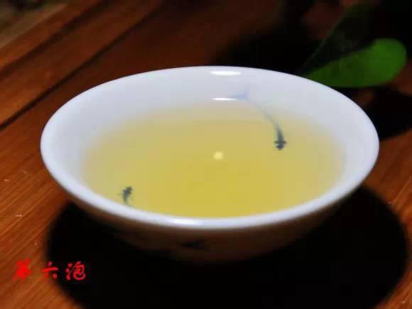 生茶茶湯第六拍【泡