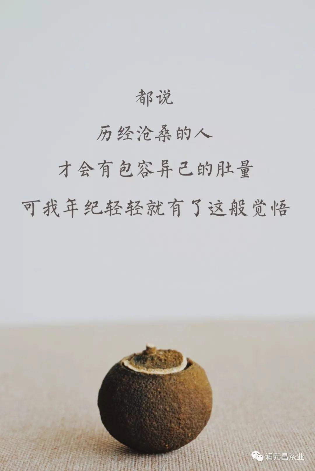 润元昌柑普茶创意海报-9