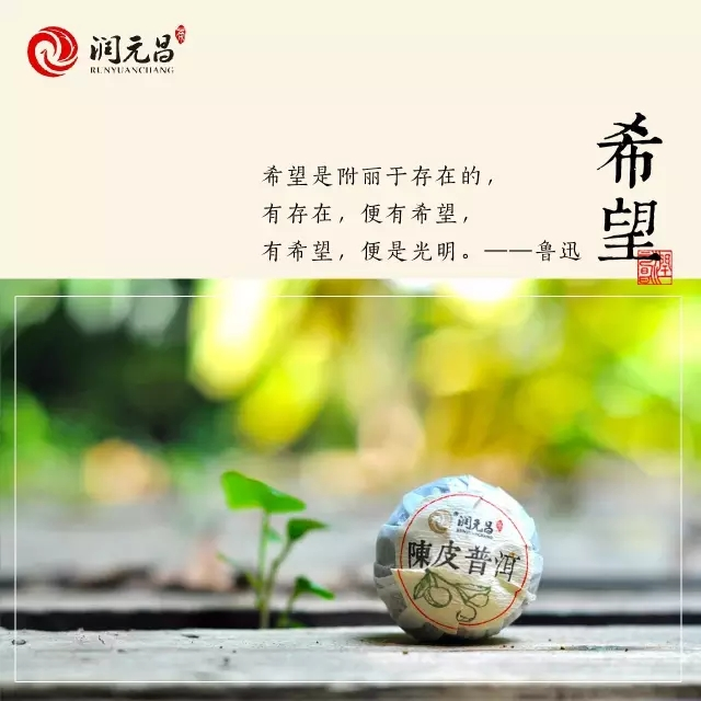潤元昌2015年小青柑.webp