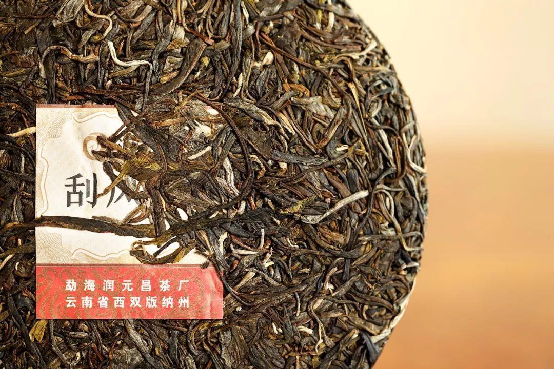 刮風寨普洱茶