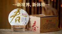 潤元昌2016年班章之春普洱熟茶春系列