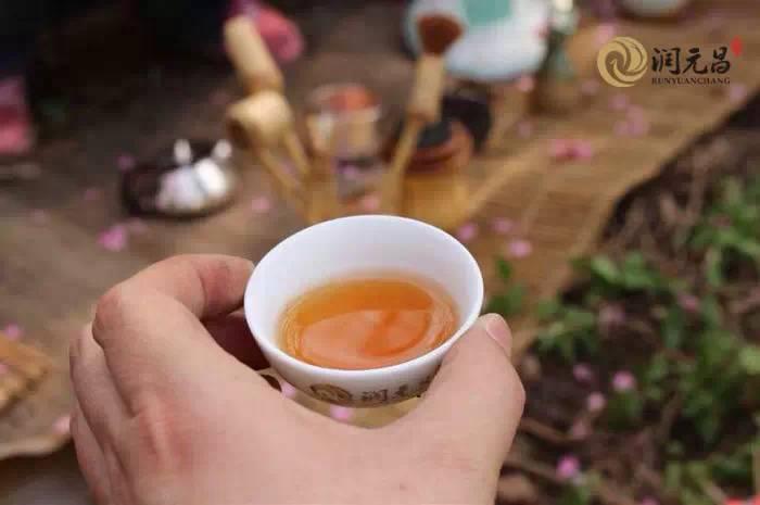 潤元昌普洱茶