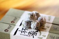 潤元昌2015年一杯春手工沱茶普洱生茶
