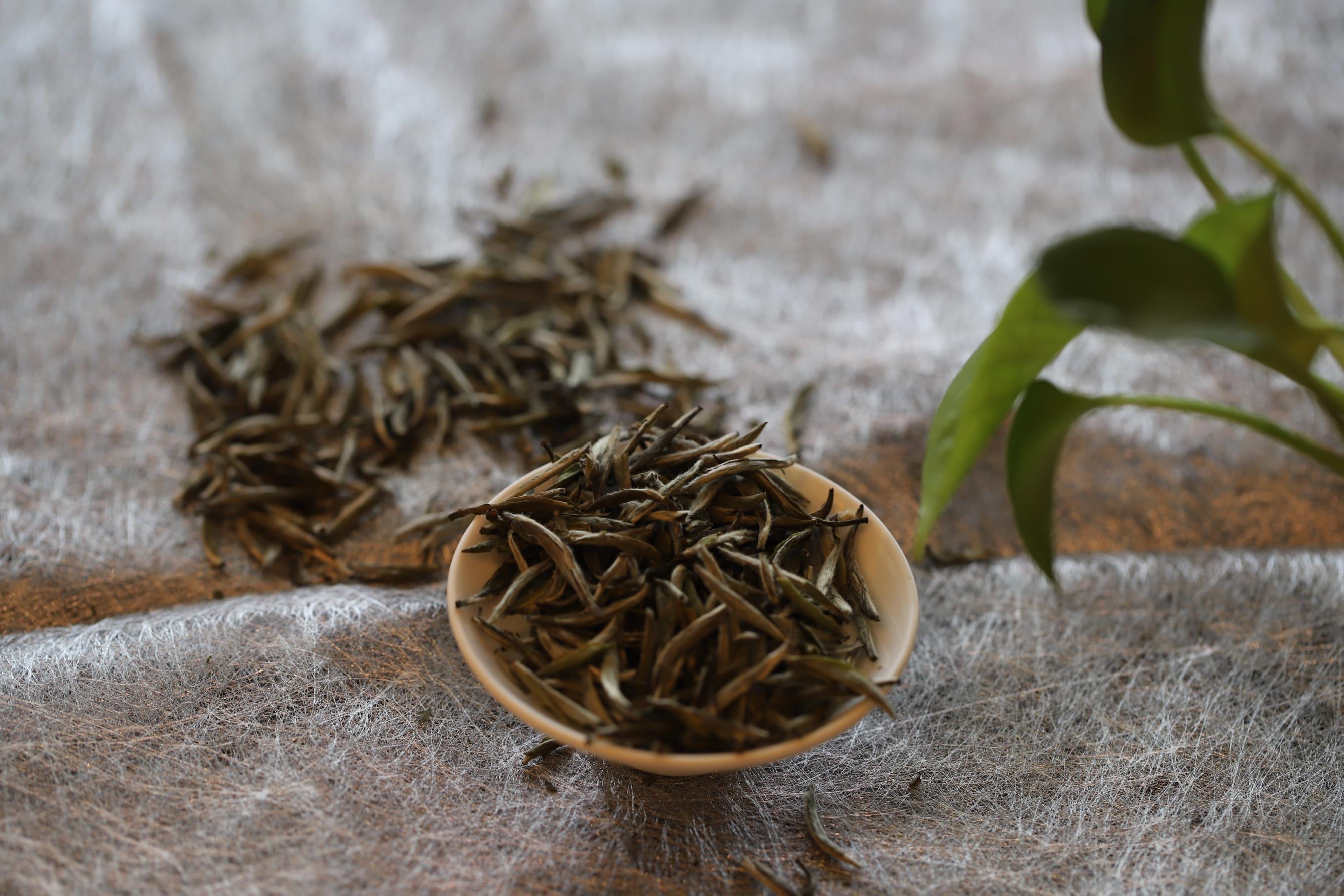 -未发布介入白茶经营最省心的赚钱姿势-IMG_1324