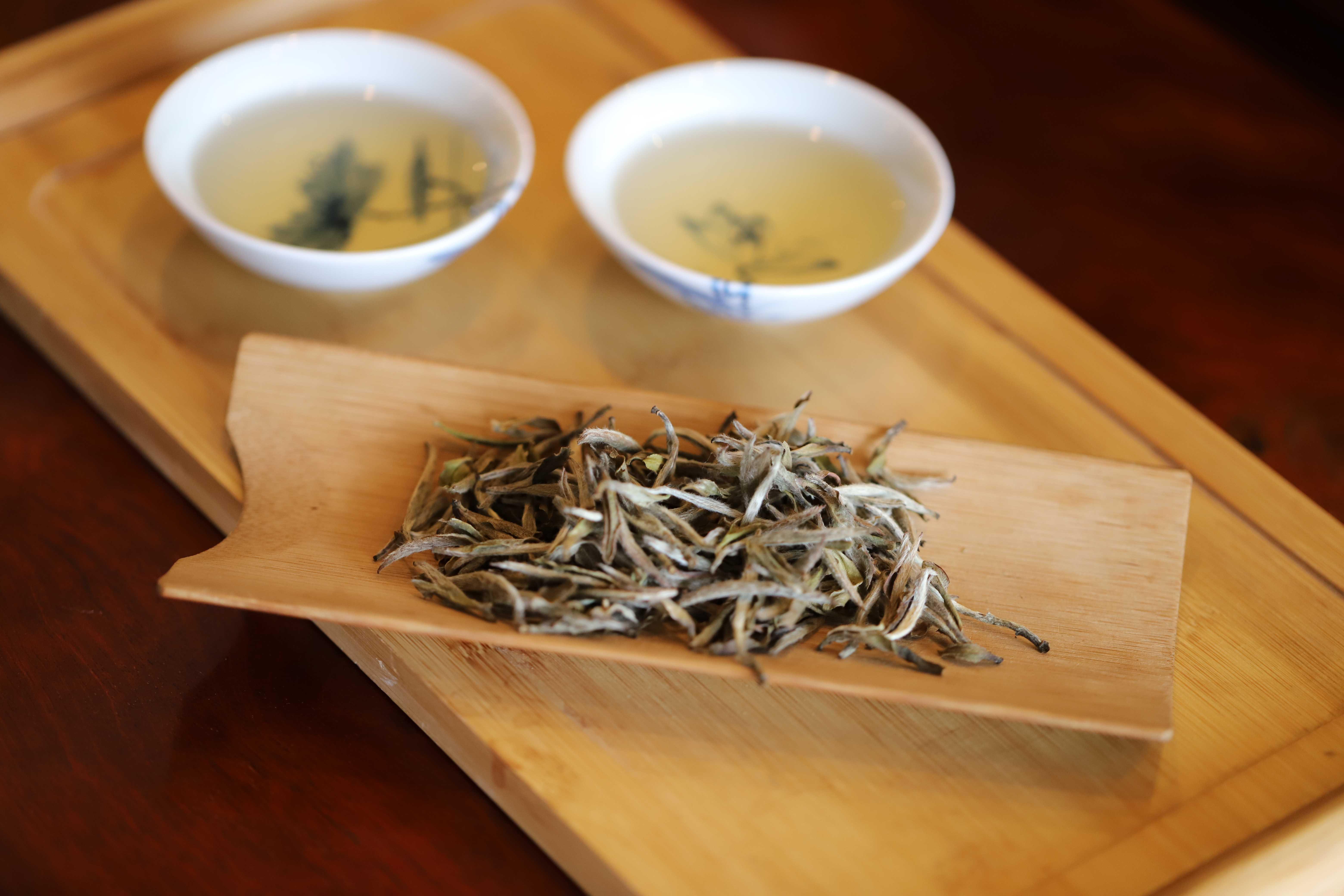 -未發布介入白茶經營最省心的賺錢姿勢-IMG_8023