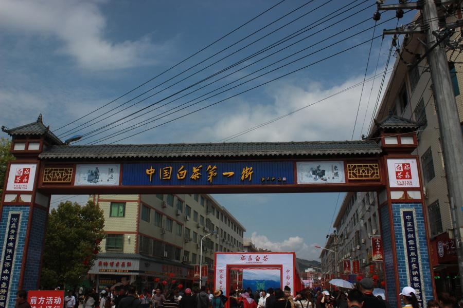福鼎白茶交易街道