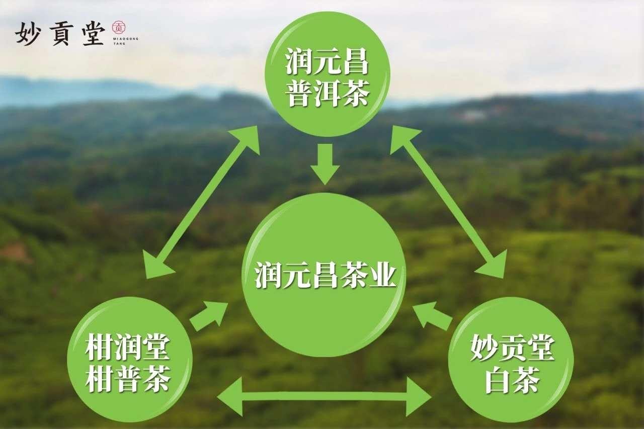 平时只做绿茶的茶庄,如何保持淡季盈利?-平时只做绿茶的茶庄,如何保持淡季盈利?-3