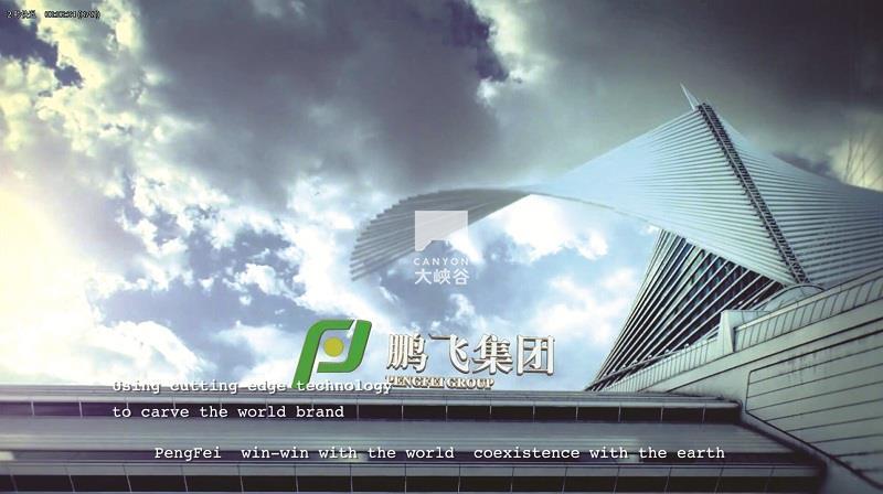 鹏飞集团-PF8