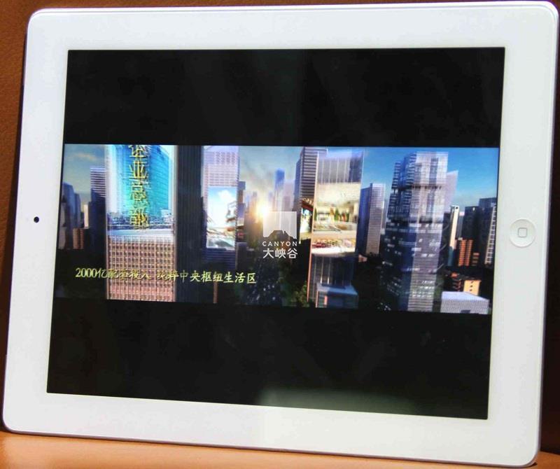iPad销售控制系统-图片12