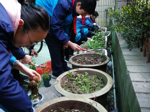 【东林中学】2019.3.12在春季播种希望的种子IMG_20190312_093720