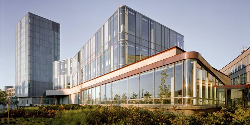 加拿大约克大学2