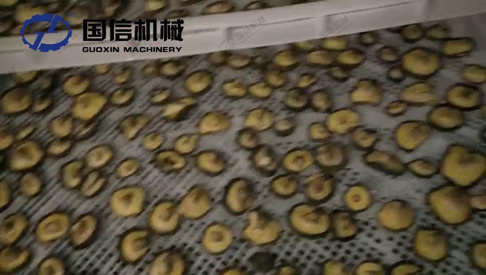 蘑菇烘干机视频