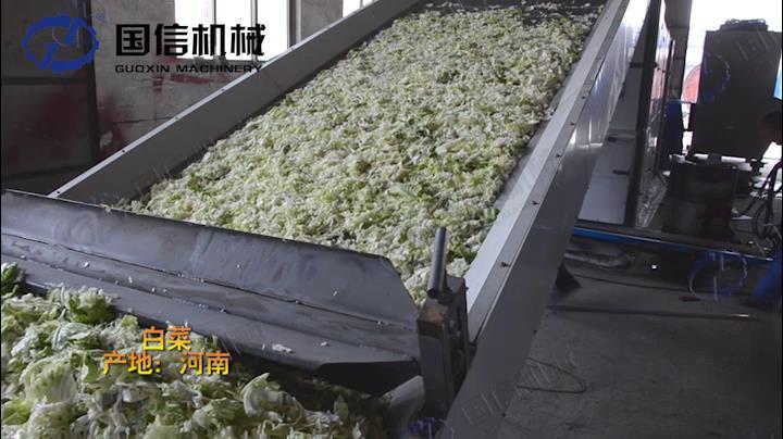 青菜烘干机视频