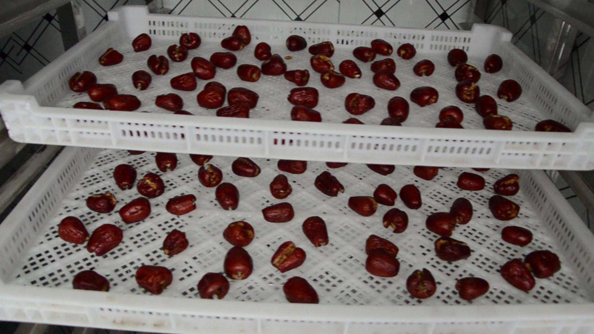 红枣烘干机视频