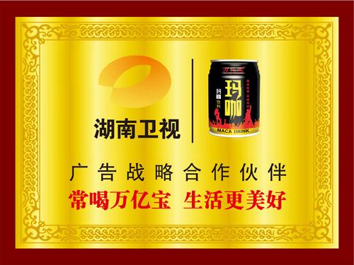 湖南卫视广告战略合作伙伴