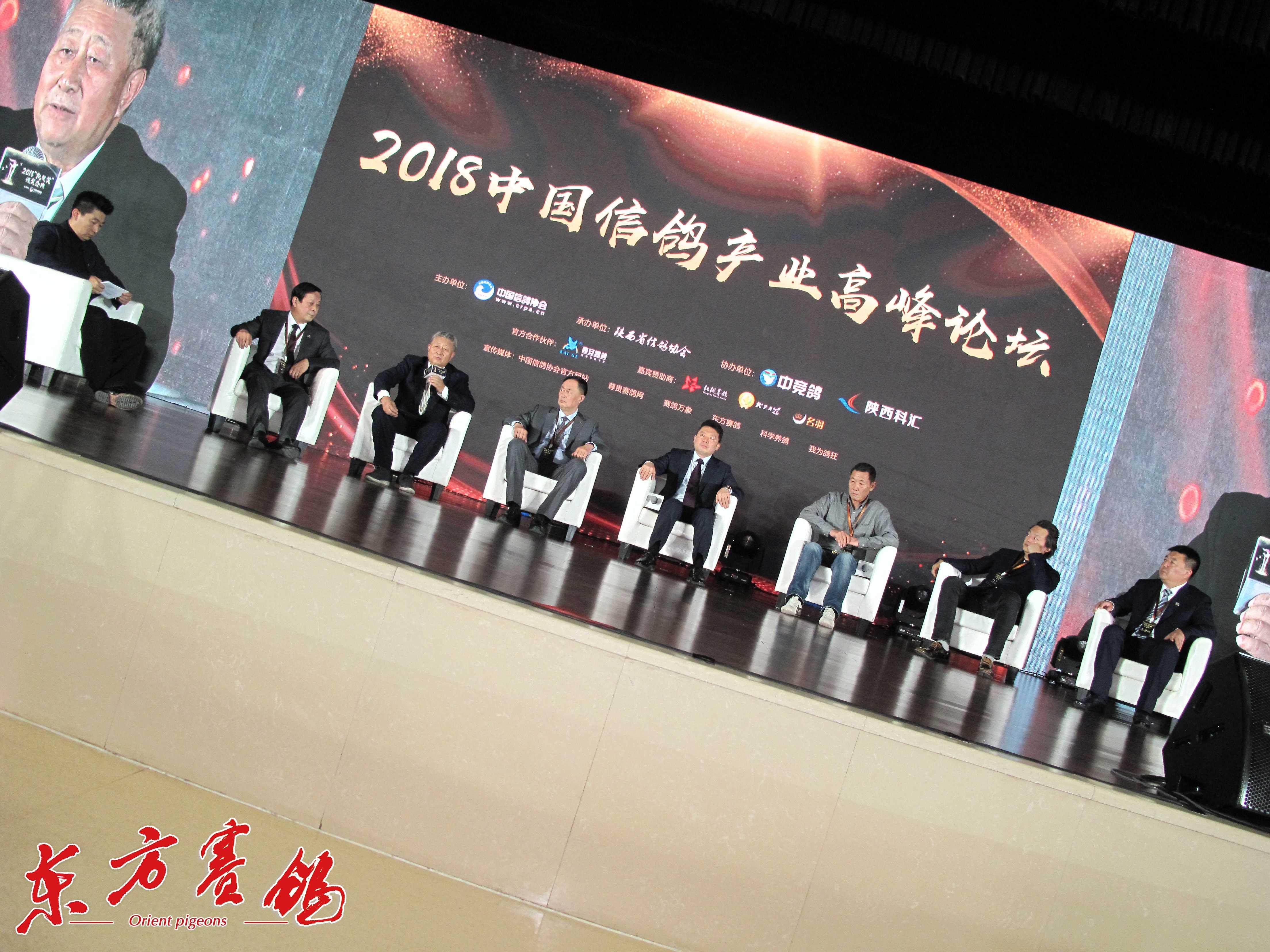 """中鸽协主办的""""中国信鸽高峰论坛嘉宾主持人罗汉宋、宋智海、樊荣、王军、李福太、杨一波、王成健、"""