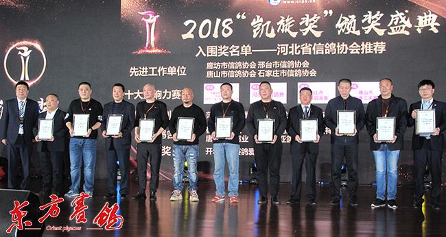 4、河北省信鸽协会先进单位和优秀鸽舍喜获入围奖。-0