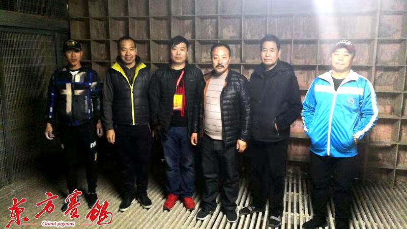 天津市信鸽协会指派的裁判和华顺德董事长张志刚-左二在清棚后在鸽舍留影。