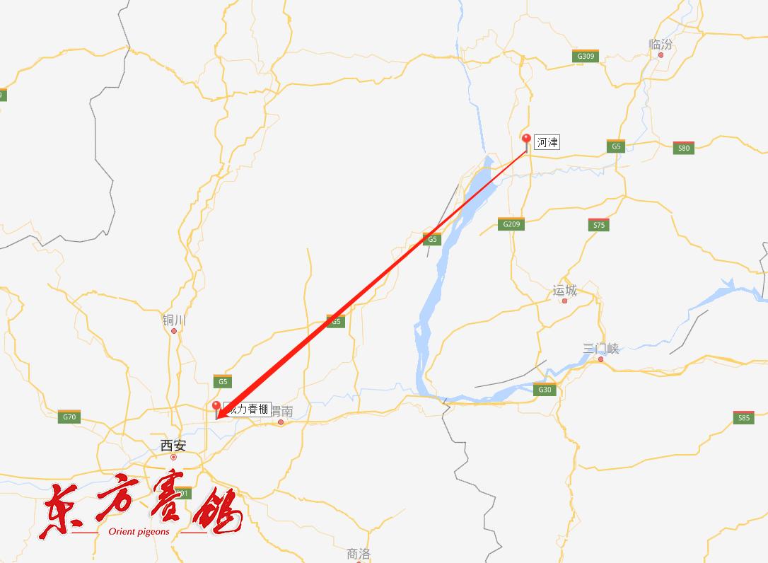 19、山西运城市河津高带路口是本次放飞地。
