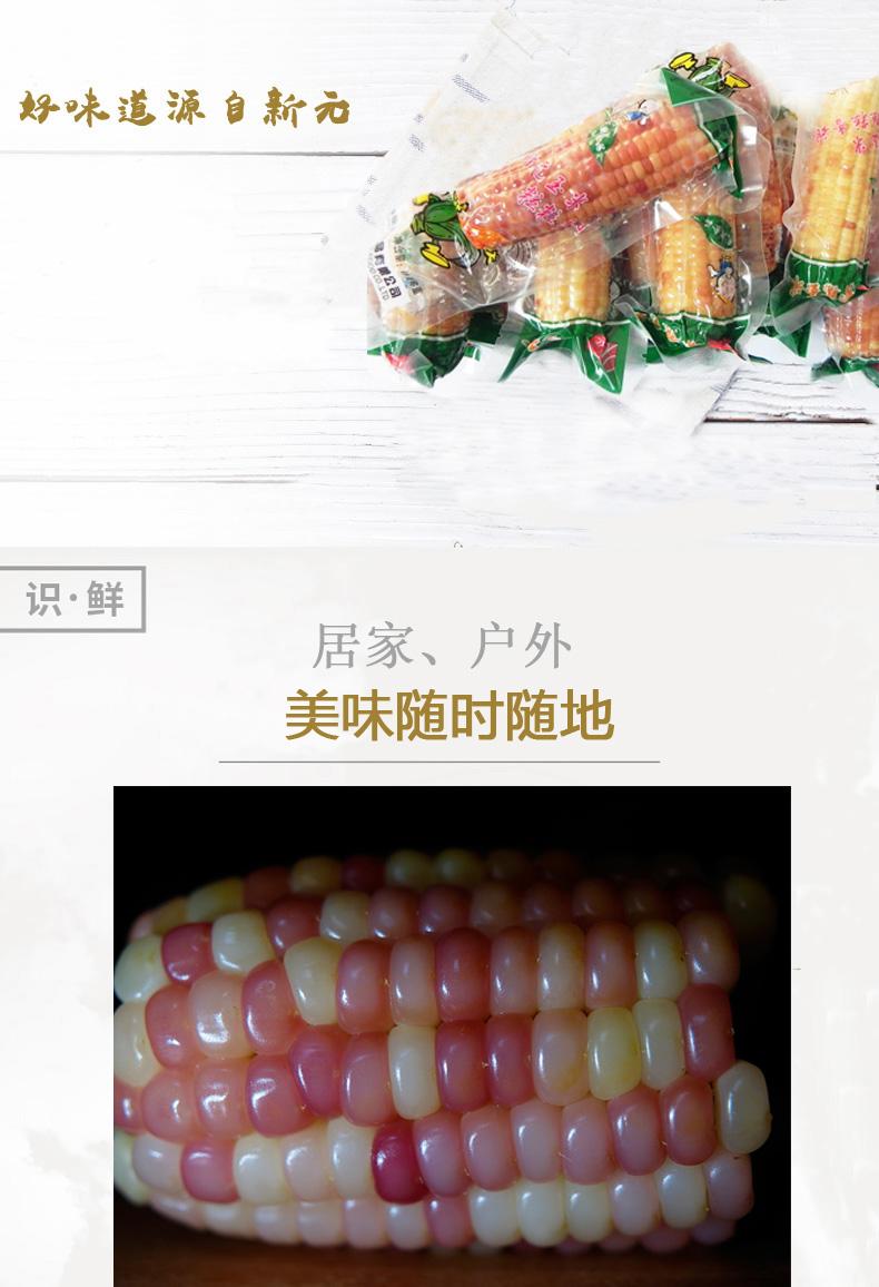 新元崇明当季新鲜紫玉米甜玉米棒子即买球平台包装零买球平台礼盒装好吃的小吃2