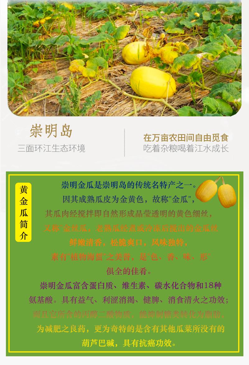 滬食金瓜絲250gx4包崇明特產黃金瓜絲食材家庭開胃涼菜脆嫩爽口6