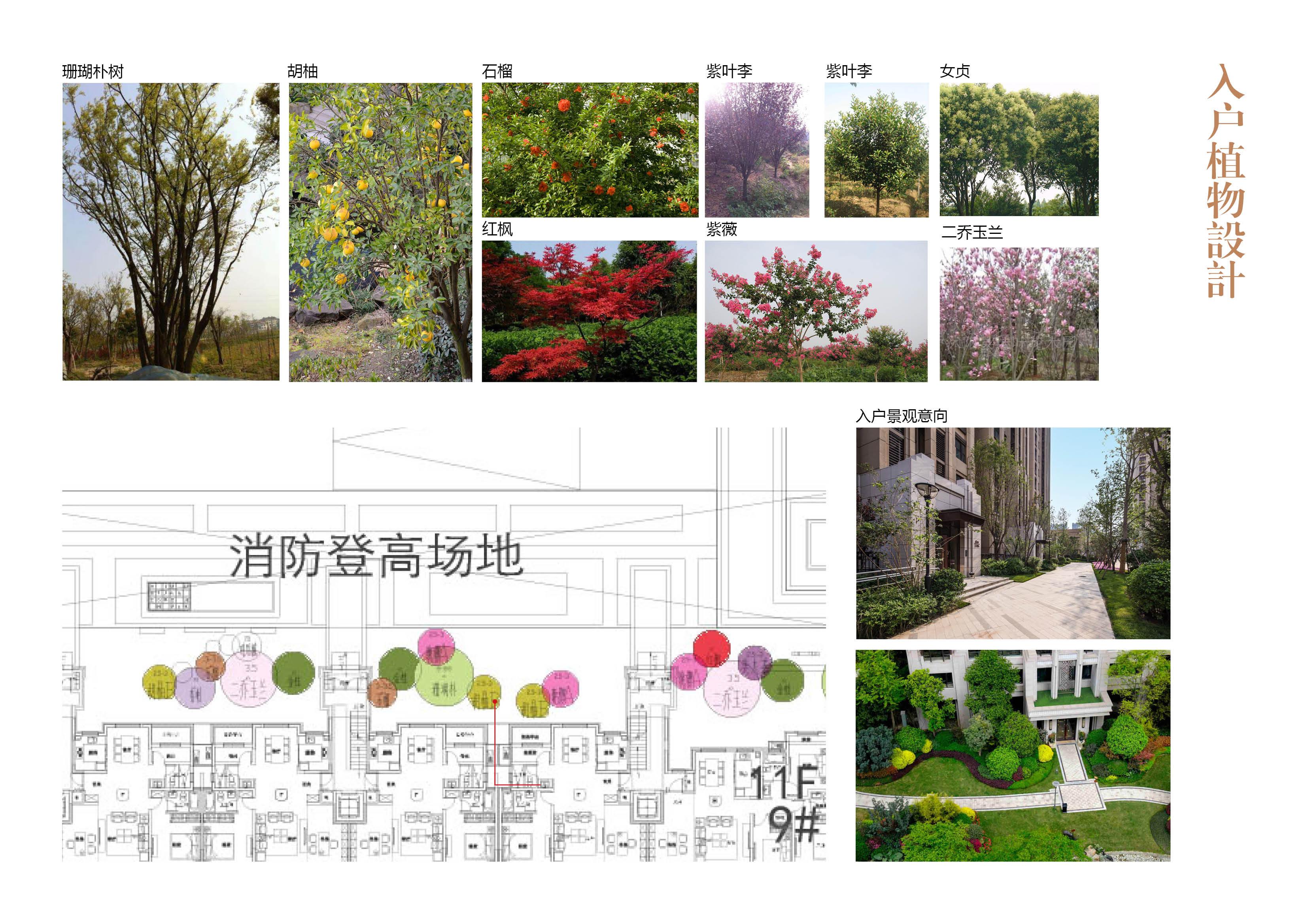 亳州府景观设计109