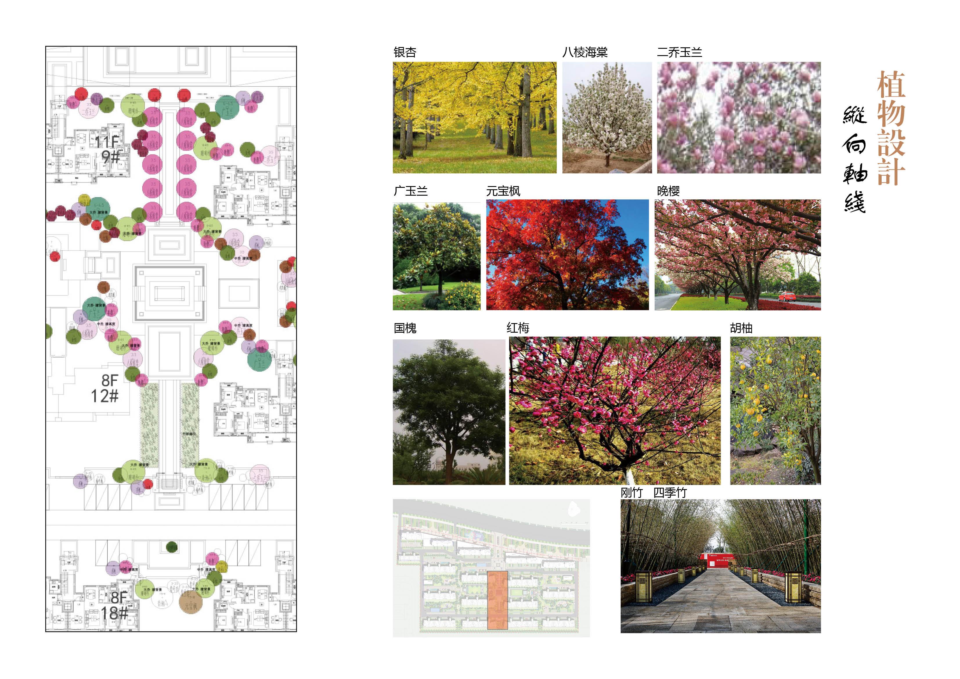 亳州府景观设计117