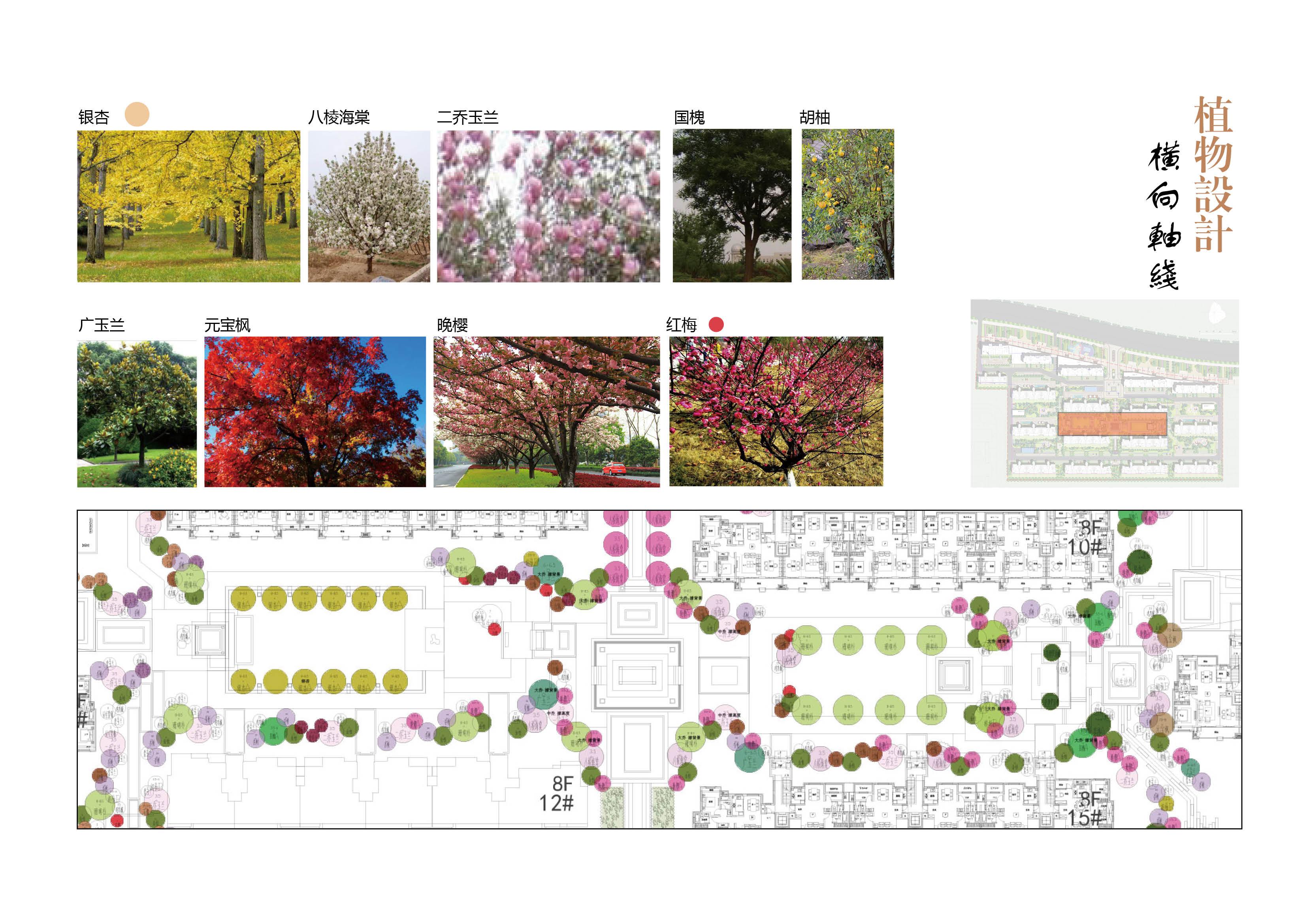 亳州府景观设计118