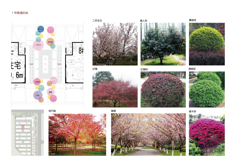 亳州三巽·公园里景观设计108