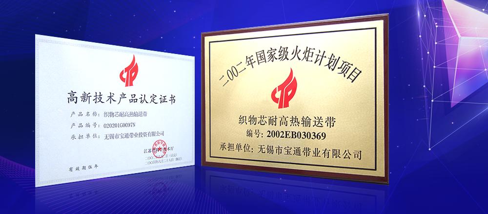 2002年,國家級火炬計劃項目,江蘇省高新技術企業。