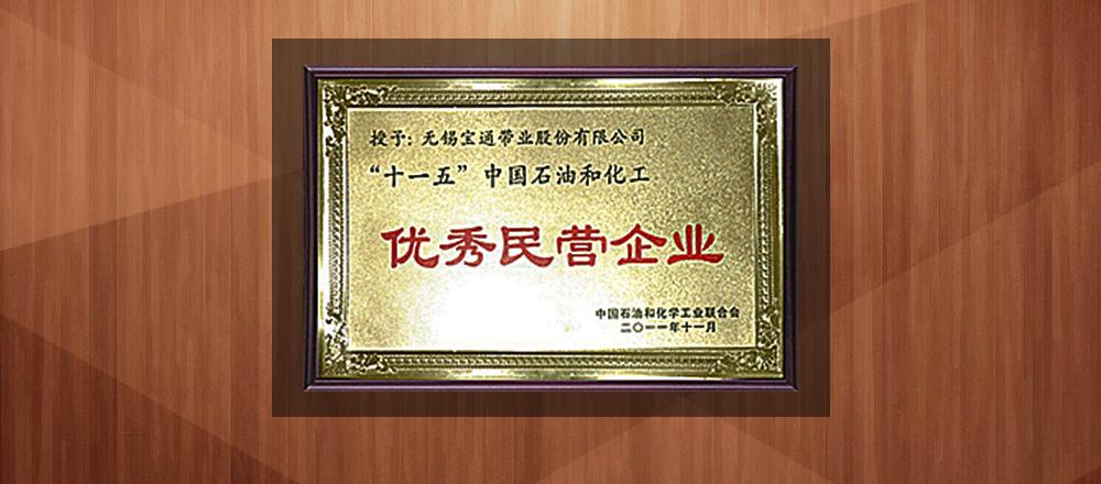 2011年,十一五中國石油和化工優秀民營企業。