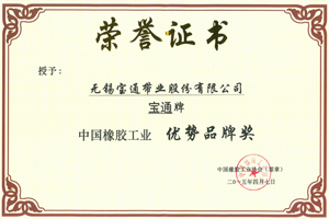 中國橡膠工業優勢品牌獎