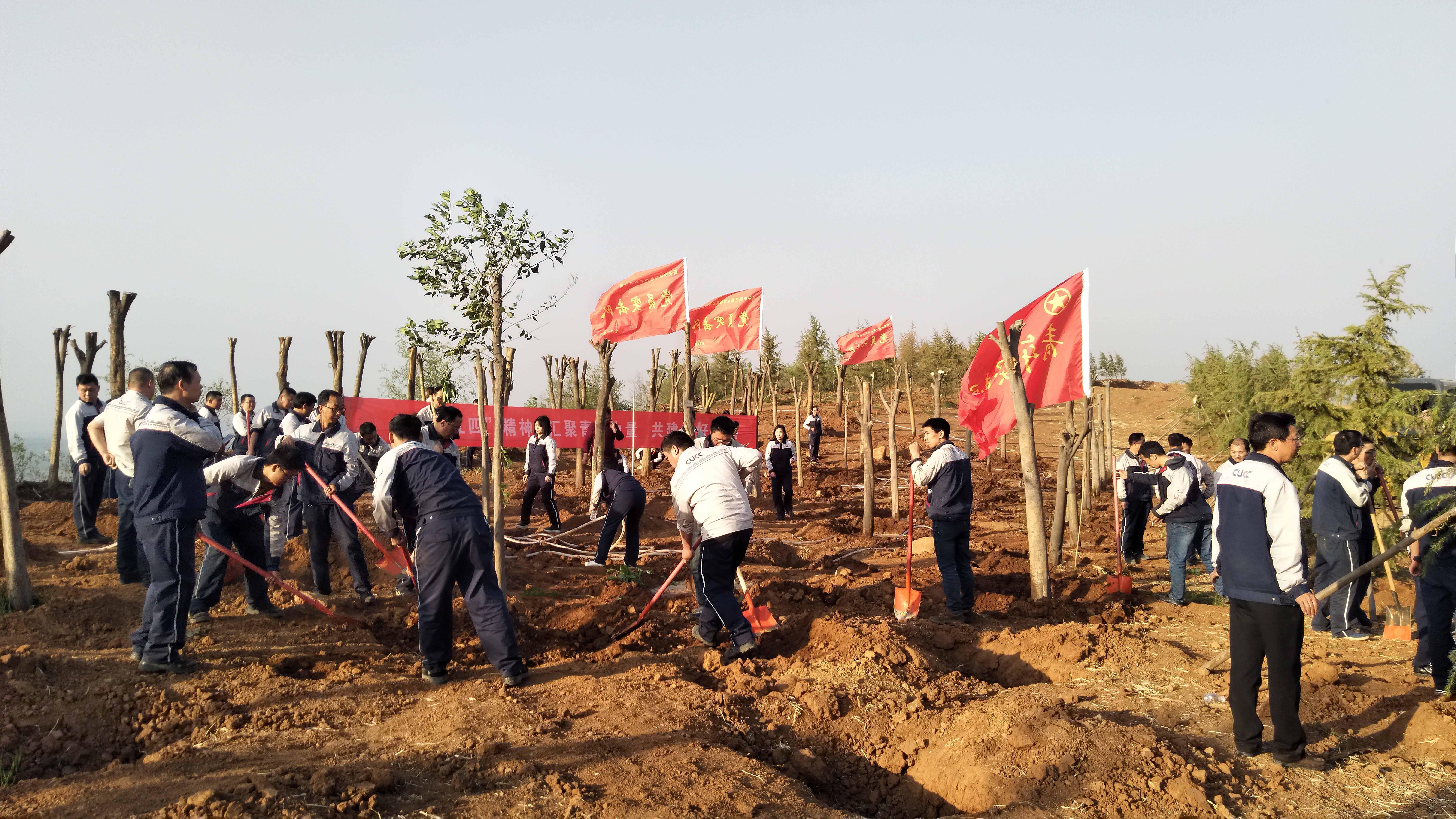 碳汇林义务植树活动