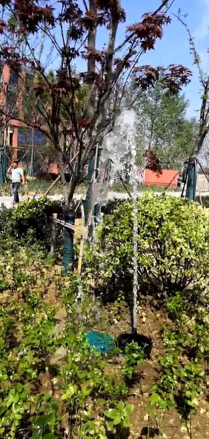 学校雨水收集系统厂家