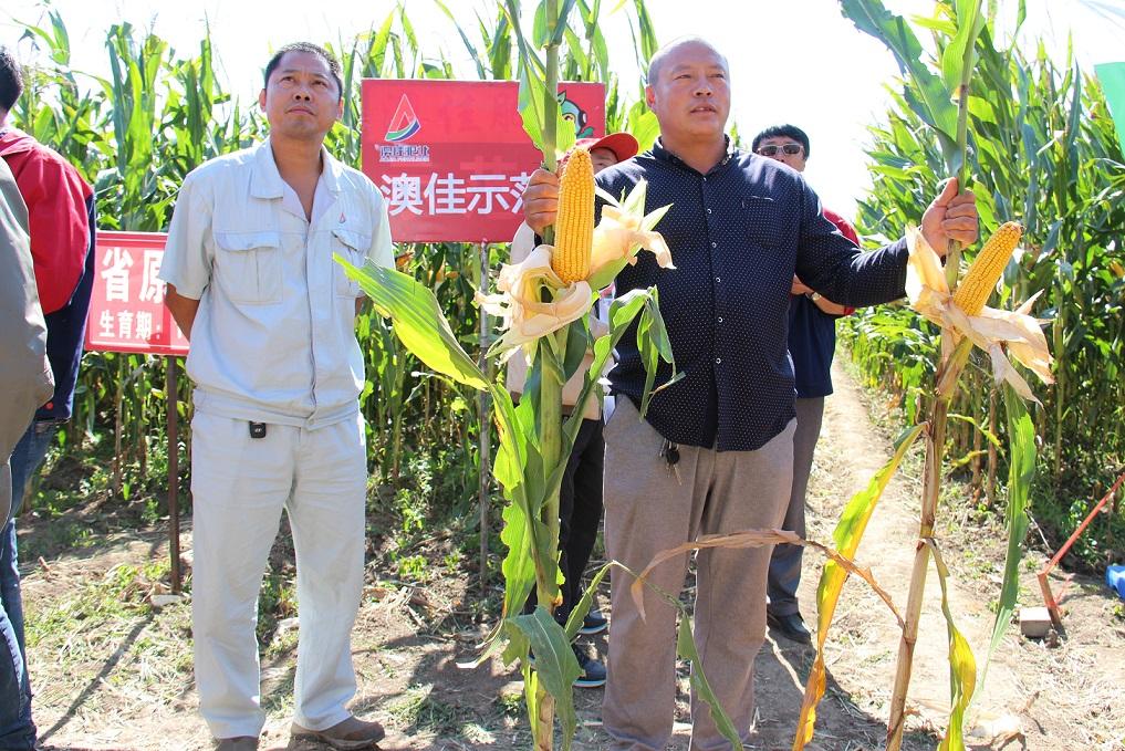 2015年9月12日吉林扶余县弓棚镇