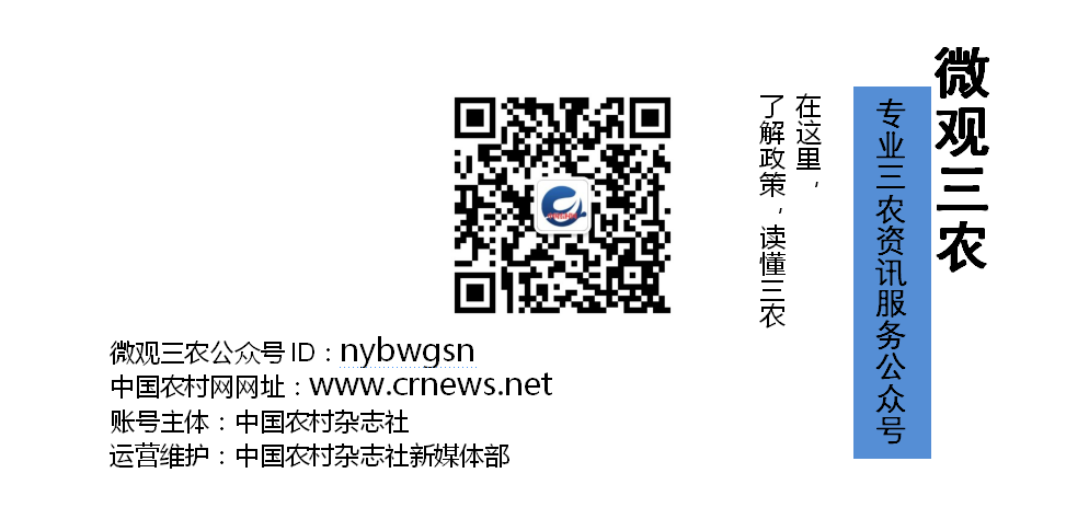 china_wechat