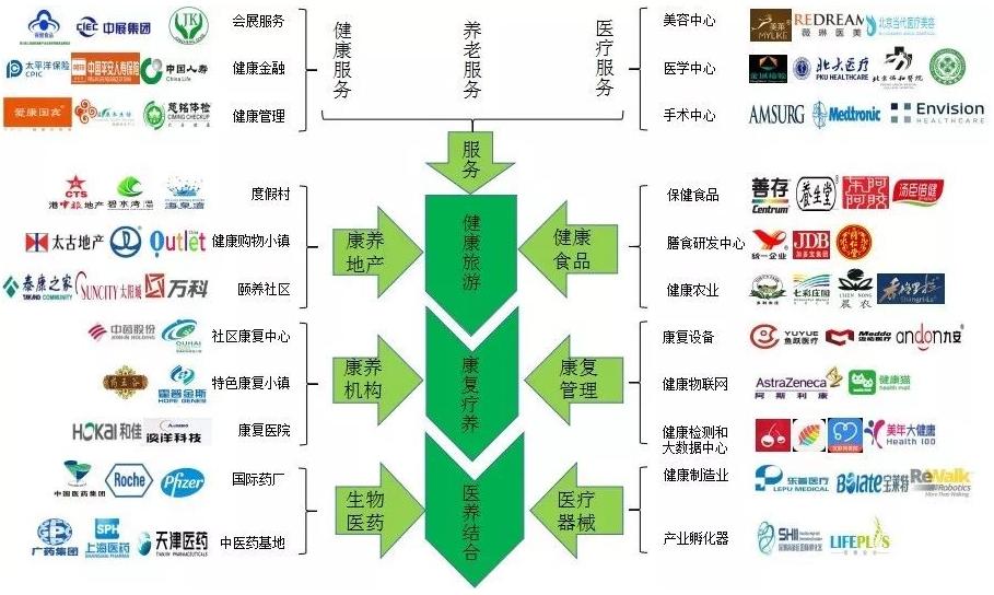 大健康產業鏈規劃