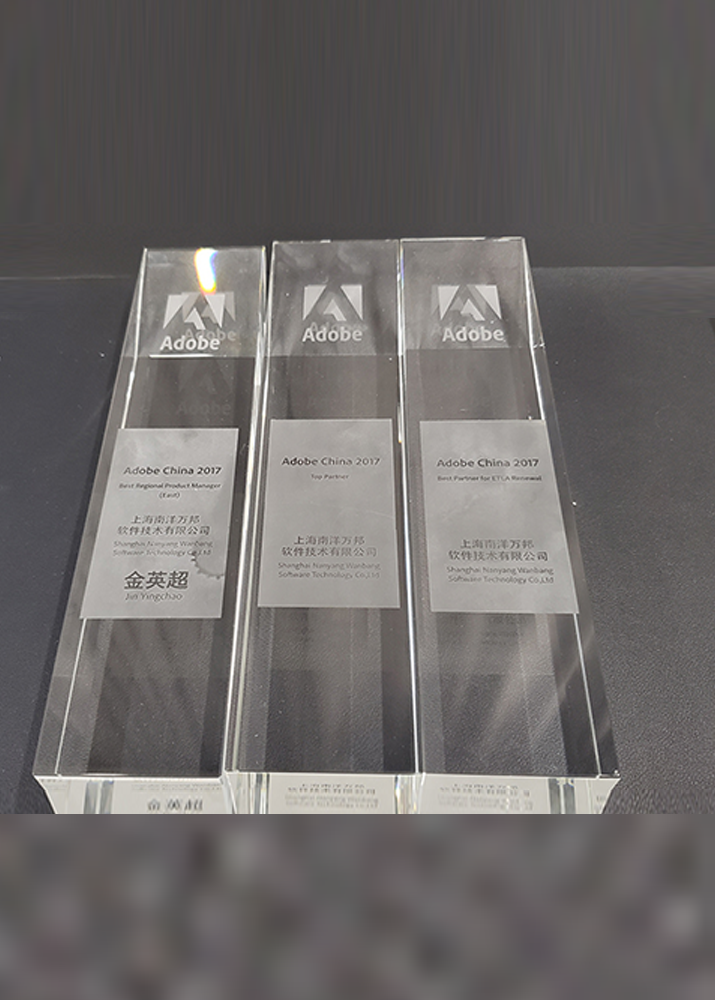 Adobe-2017-Top-Partner