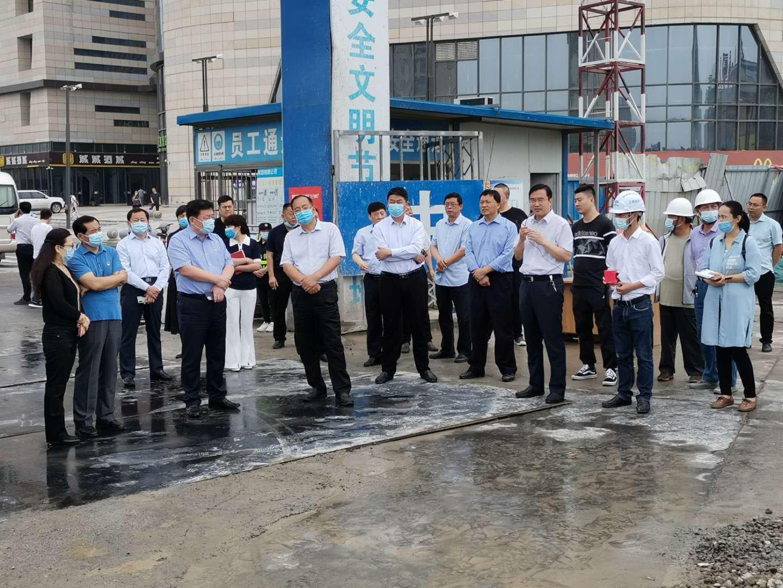 市政協主席鄭大文一行調研集團公司項目建設情況