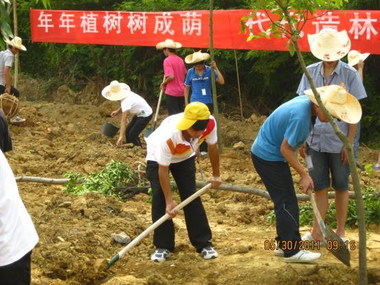我校學生參加柳州團市委組織的2011年度植樹活動圖片07—同學們在植樹中