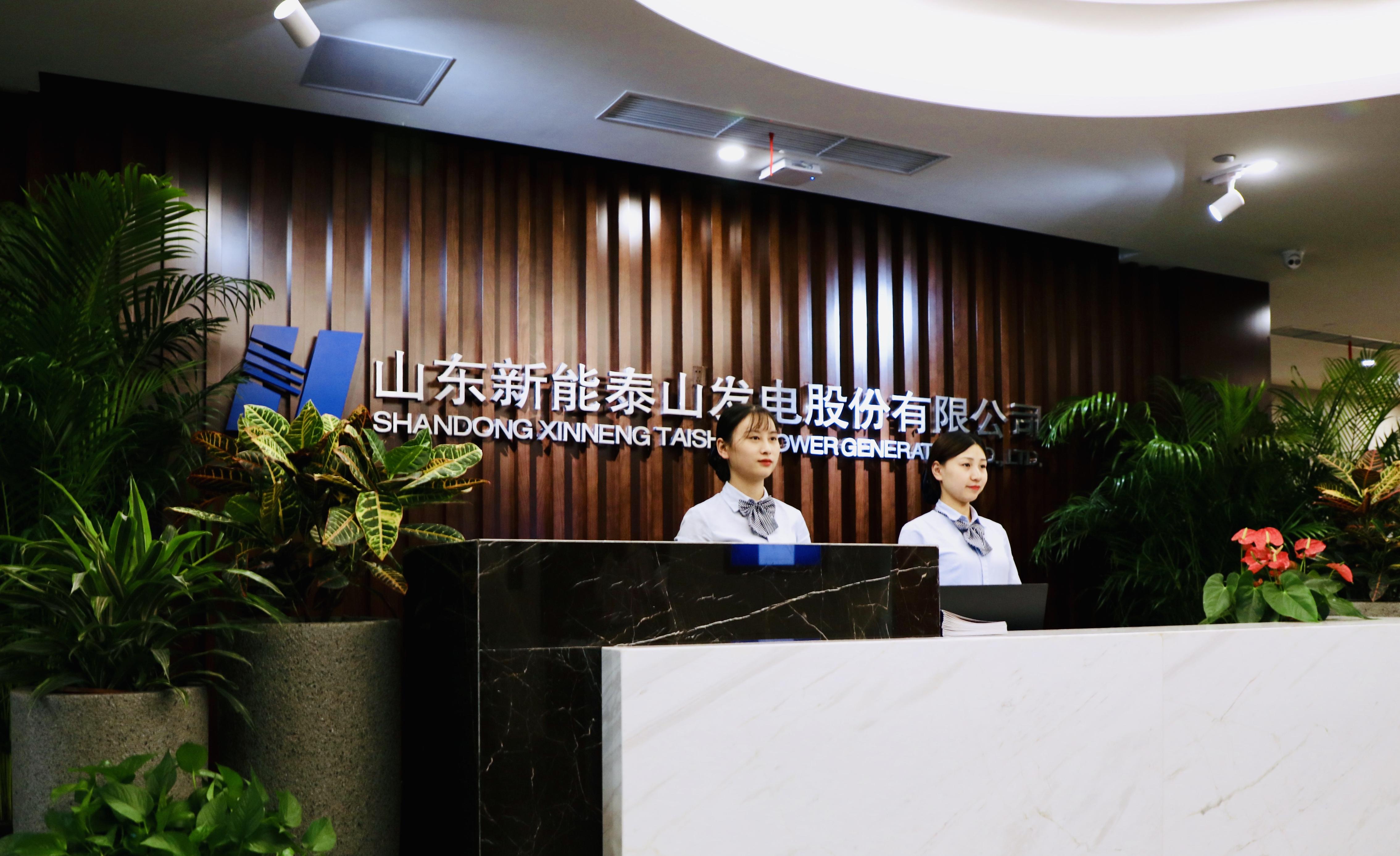 新能泰山發電股份有限公司