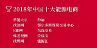 2018年中國十大能源電商