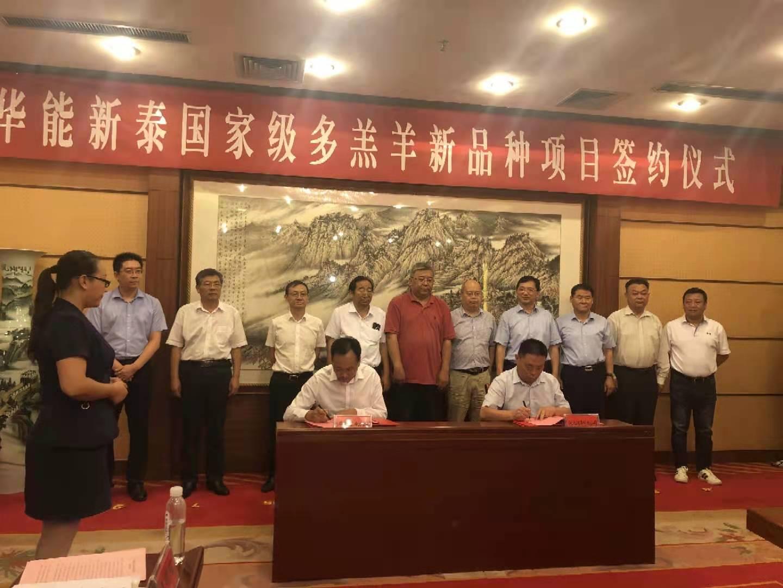 華能泰山電力有限公司與河北潤濤牧業科技股份有限公司在新泰舉行華能新泰國家級多羔羊新品種項目簽約儀式