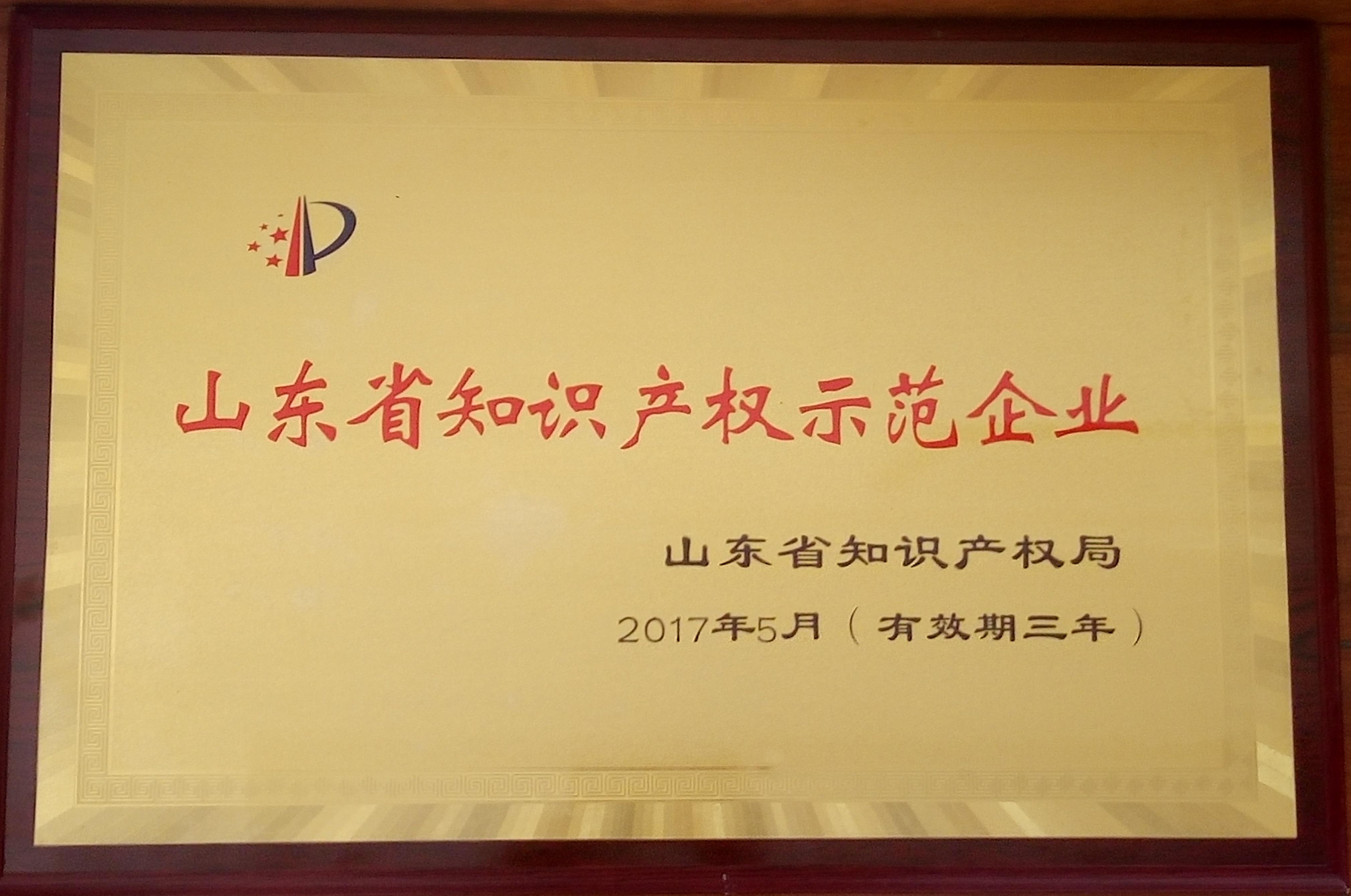 山東省知識產權示范企業