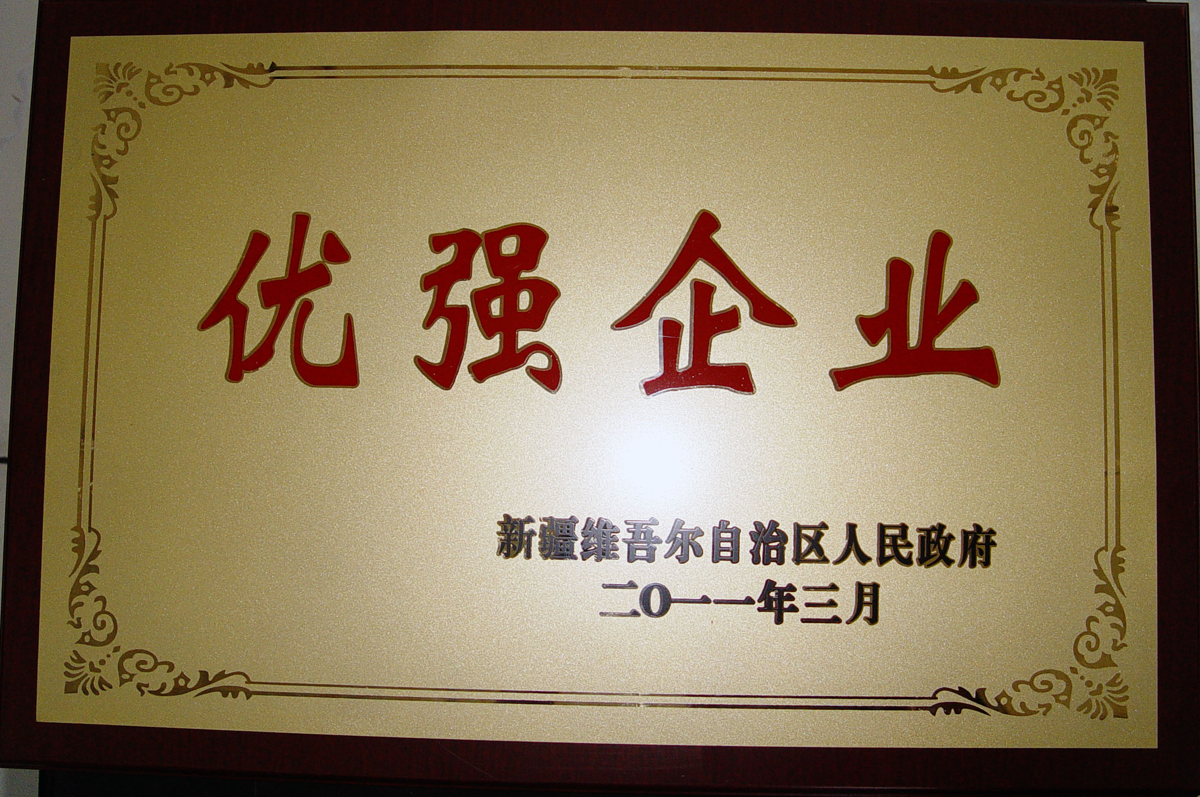 自治区优强企业2011.3