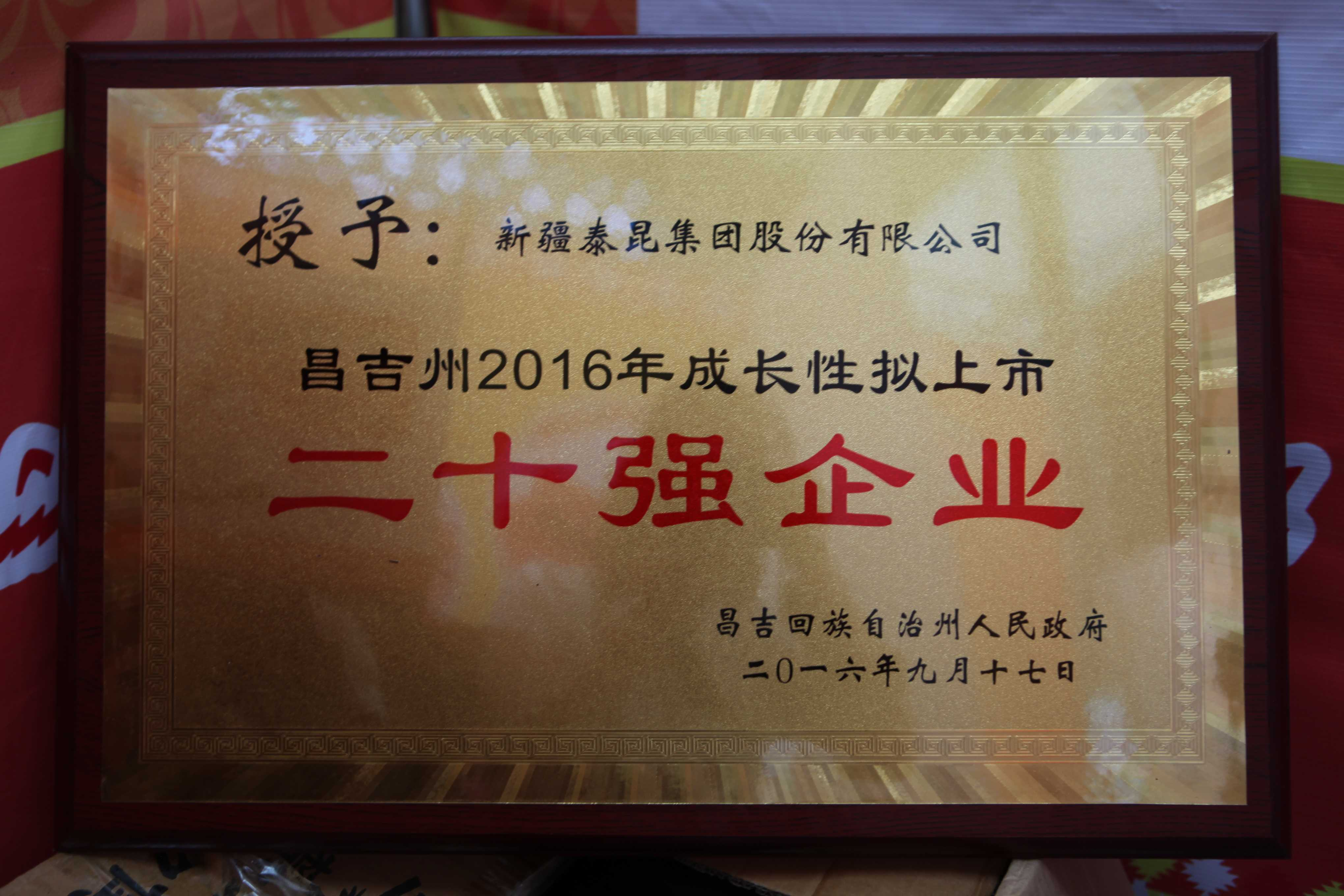 昌吉州2016年成長性擬上市二十強企業2016.9