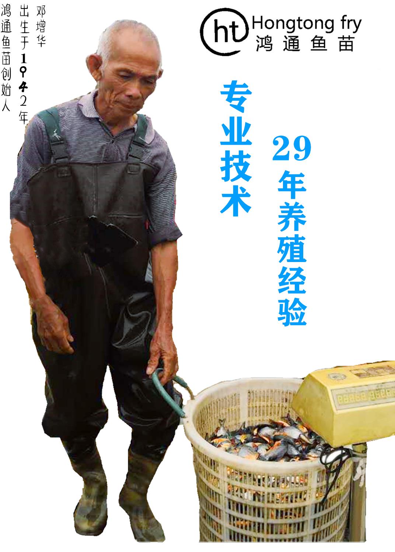 56_副本52_副本_副本