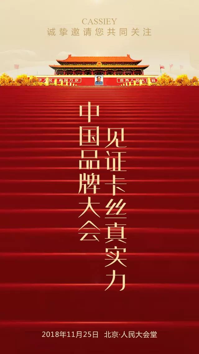 卡丝中国品牌大会11