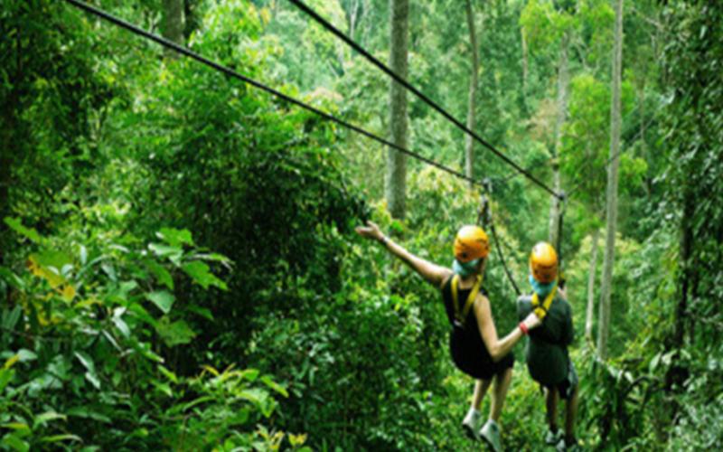 丛林飞越2